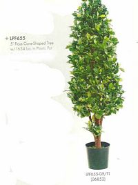 5 feet Ficus Cone Shaped Tree with 1634 leaves in Plastic Pot Two Tone Green