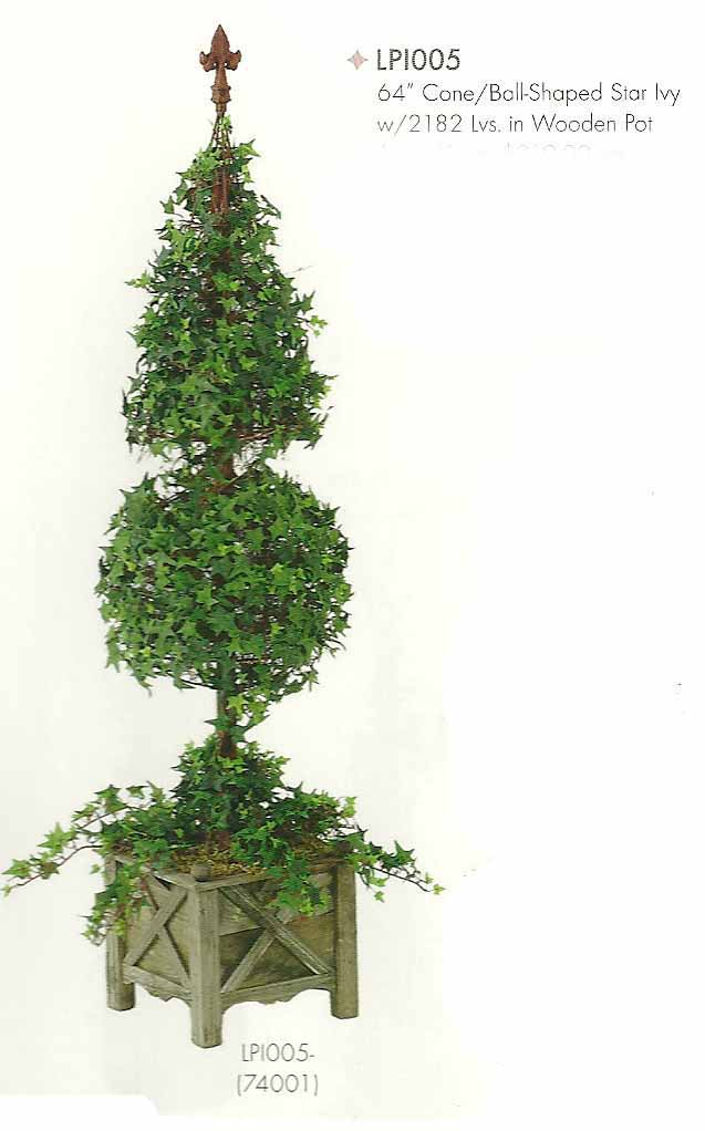 64 inch Cone and Ball Shaped Star Ivy with 2182 leaves in Wooden Pot