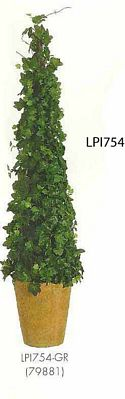 30 inch Ivy Cone Topiary in Terra Cotta Pot Green