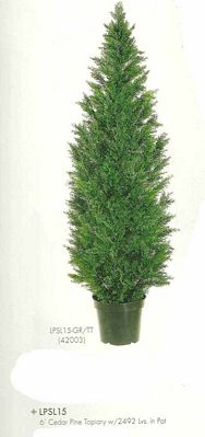 6 feet Cedar Pine Topiary with 2492 leaves in Pot Two Tone Green