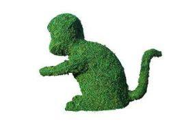 Monkey Frame Topiary with Moss 18 inches tall