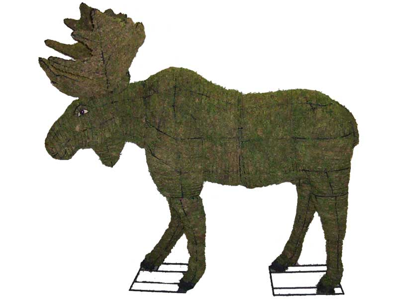 Moose, 60 inch  (Mossed) 60 inch  x 66 inch  x 37 inch