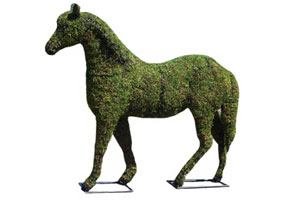 horse topiary frame mossed