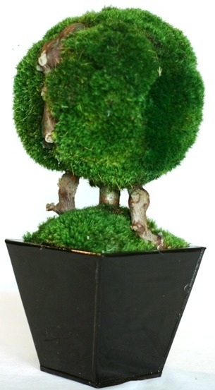 13 inch   Single Ball Moss Topiary