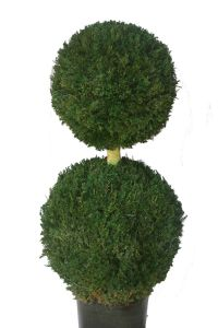 Handcrafted Double Ball Topiary 50""