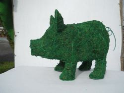 Pig Frame Topiary with Moss 10 inches tall
