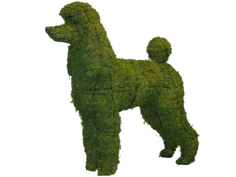 Poodle, 17 inch  (Mossed) 17 inch  x 18 inch  x 9 inch