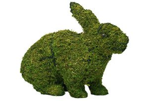 Rabbit, Hopping, 13 inch  (Mossed) 13 inch  x 17 inch  x 7 inch