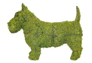 Scottie, 18 inch  (Mossed) 18 inch  x 25 inch  x 8