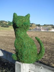 Sitting Cat Moss Topiary 11 inch Tall