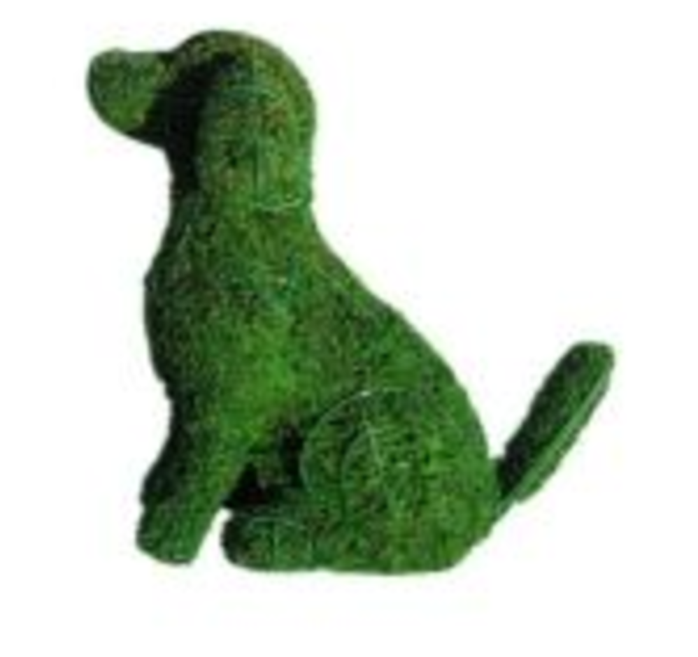 Dog Frame Topiary with Moss 18 inches tall