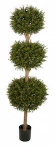 6 and 5 Foot Wintergreen Boxwood Triple Ball Topiary