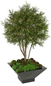 4 Foot Wintergreen Boxwood Shrub Topiary Limited UV Resistance