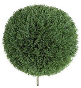 24 Inch Cedar Ball Topiary Limited UV Protection