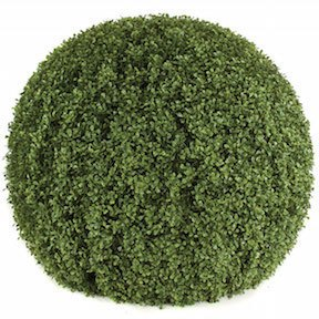36 Inch x 29 Inch Boxwood Ball Topiary Limited UV Protection