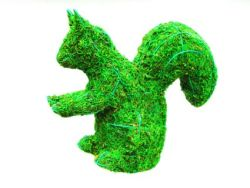 Squirrel Frame Topiary with Moss 12 inches tall
