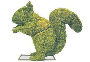 Squirrel, 12 inch  (Mossed) 12 inch  x 14 inch  x 5 inch