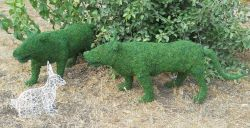 Tiger Frame Topiary with Moss 22 inches tall
