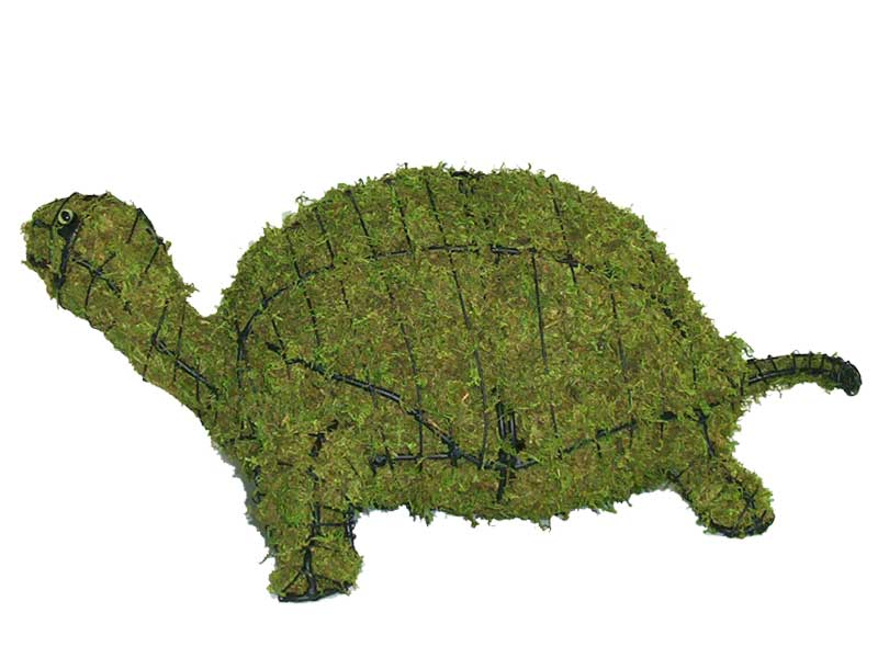 Turtle, 12 inch  (Mossed) 12 inch  x 29 inch  x 19 inch