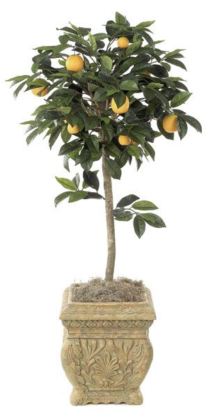 Artificial Topiary Trees, Flower Topiary, 4 and 5 feet   Orange Fruit Topiary