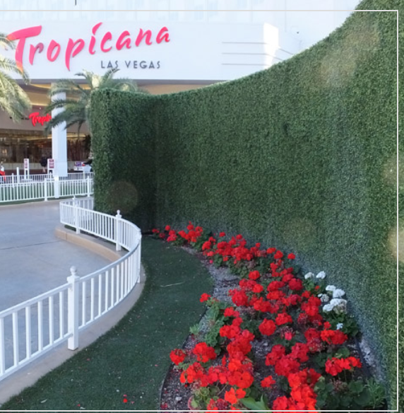 topiary wall made of polyblend living in Las Vegas(